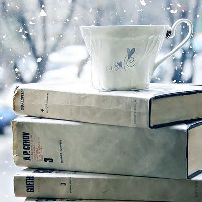 Una tazza di neve